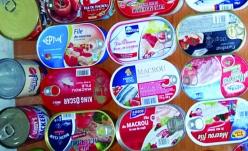 Studiu de piață despre conservele de macrou în sos tomat