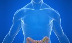 Bacteria E. Coli ca ţap ispăşitor şi cauza reală a sindromului hemolitic uremic