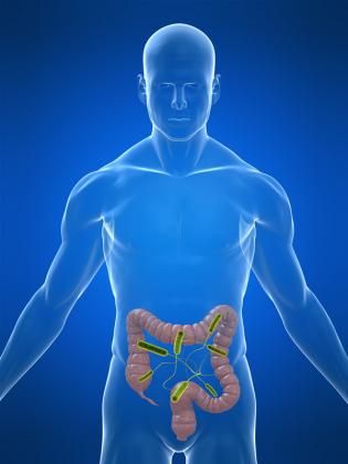 Bacteria E. Coli ca ţap ispăşitor şi cauza reală a