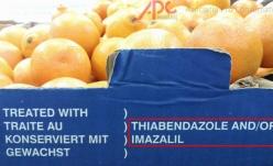 Fructele și legumele autohtone consumate de români conțin pesticide!