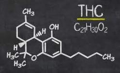 APC a sesizat DIICOT cu privire la substanța psihotropă tetrahidrocanabinol din alimentele retrase de LIDL de la vânzare!